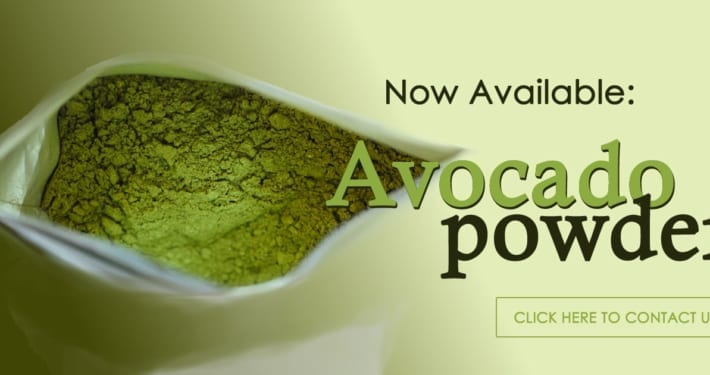 avocado powder from Envisage Limited in Kenya